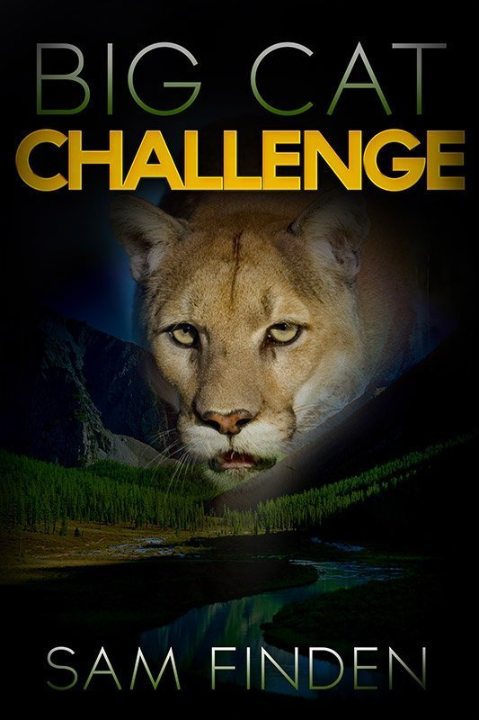 Big Cat Challenge By Sam Finden